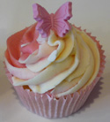 Celebration Cupcakes - Butterfly Swirl